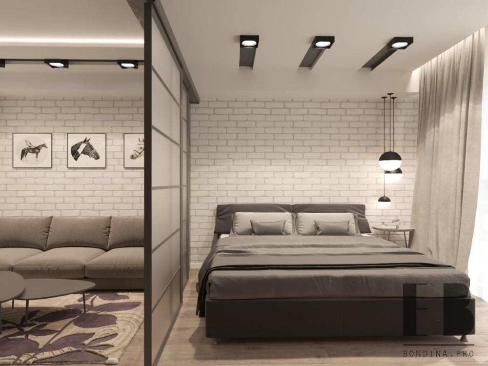 Спальня гостиная со стеклянной перегородкой дизайн